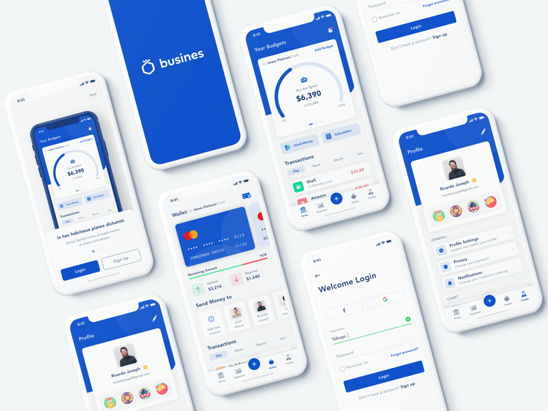 Business Banking App Concept