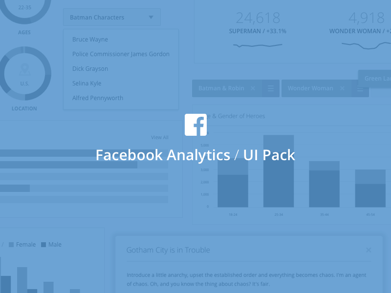 Exclusive Facebook Analytics UI
