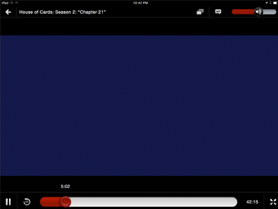iPad Netflix Player