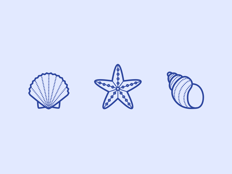 3 Seashell Icons
