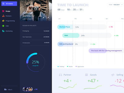 Sample Progress Dashboard