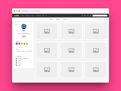 Preview Dribbble Profile
