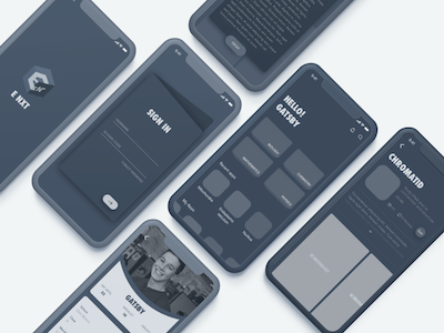 Mobile Store Wireframe