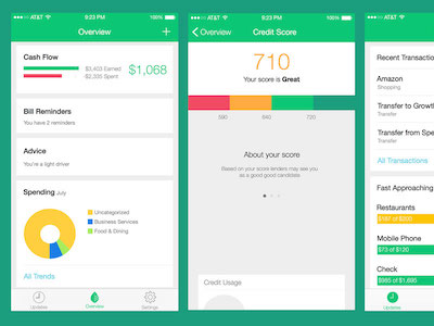 Mint: Money Manager iOS App UI