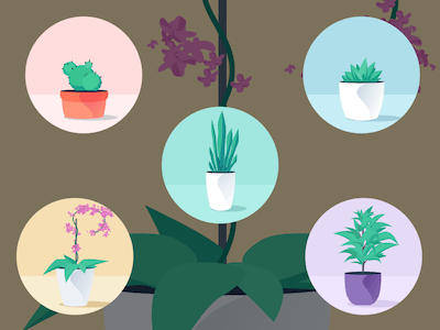 Office Plants Illustrations