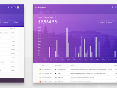 Web Payments History Template