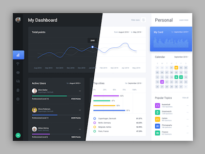 Web Dashboard